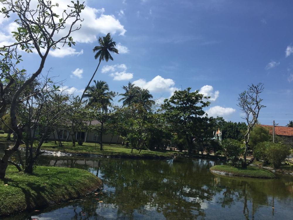 Ahangama/Koggala, Sri Lanka